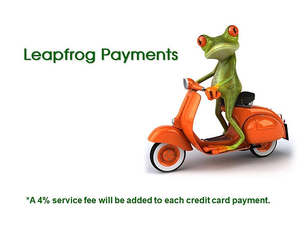 Leapfrog Payment Picture.jpg