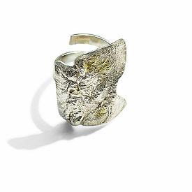 Tin Foil Ring .jpg