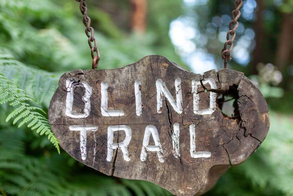 Blind Trail site sign (2).jpg