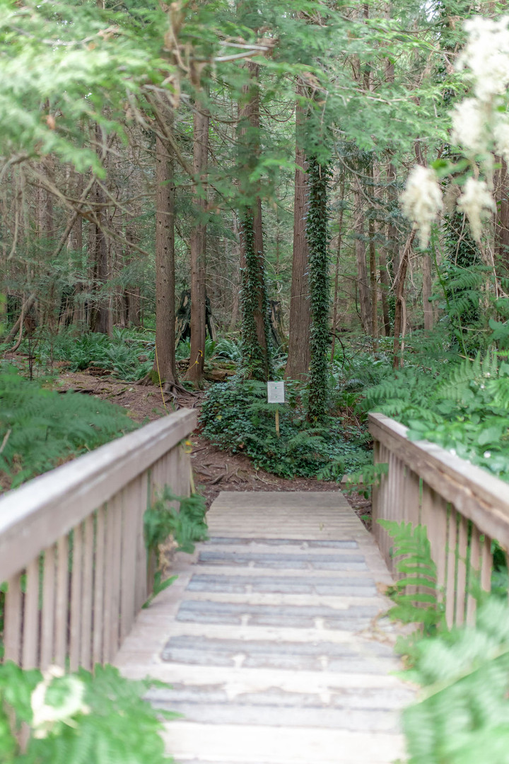 Blind Trail entrance - Copy.jpg