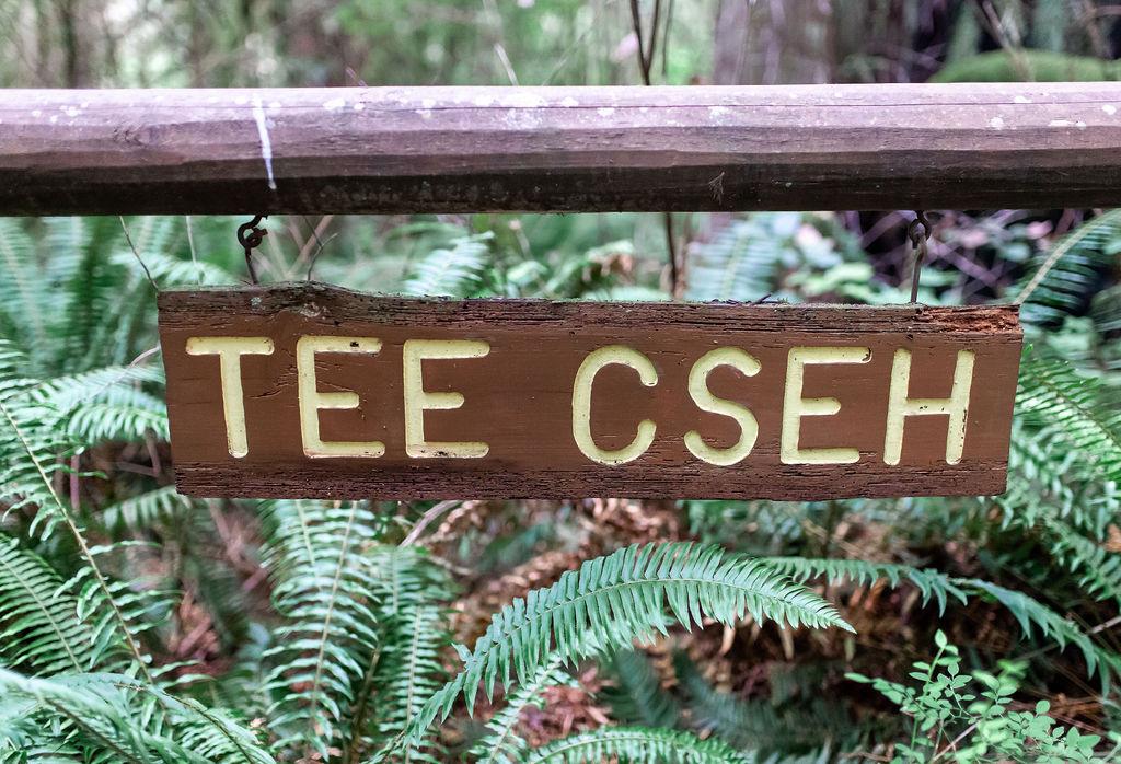 Tee Cseh site sign.jpg