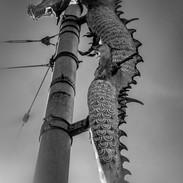 Dragon - International District, Seattle