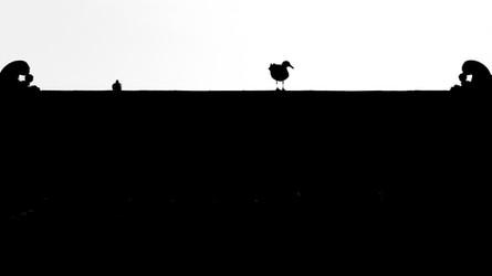 Gull and Pagoda