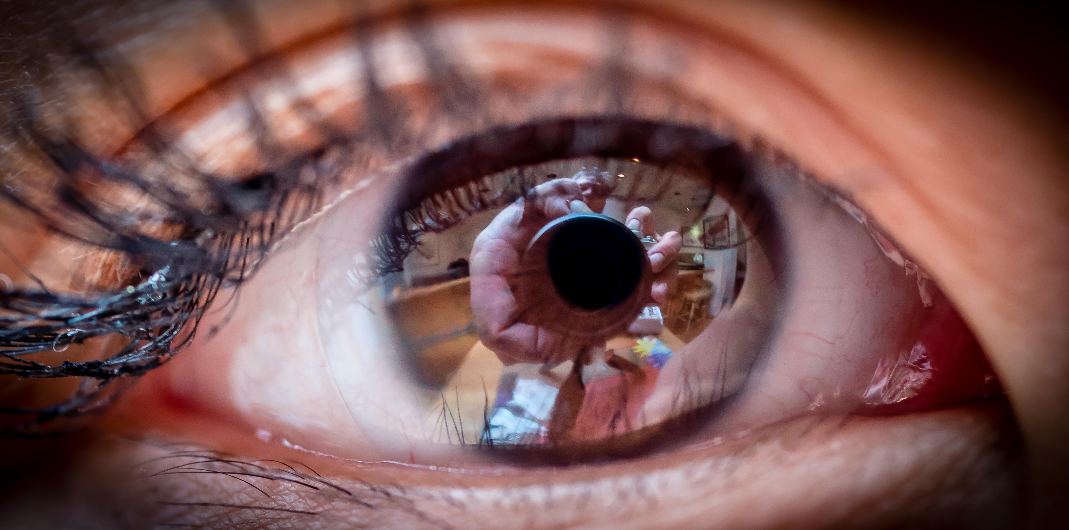 Eye Macro, 2017