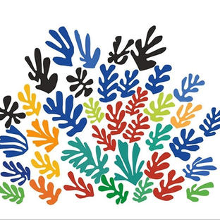 Matisse Cut Outs | Enid Garber