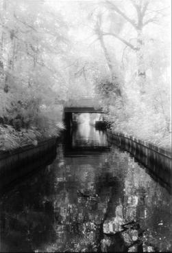 "Tree Lined Canal  20 x 25"" Framed black and white photograph.  $195"