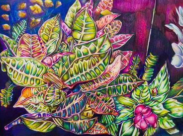 """Croton Reproduction Print original medium - color pencils 16 X 20"""" $200"""