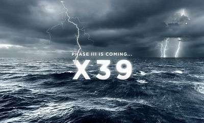 X39.jpg
