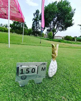 Wild Rose / Pink Drive Gholf day