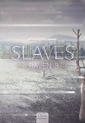 A cover Raven 3.jpg