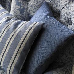 Arley-Stripe-and-Darcy.jpg