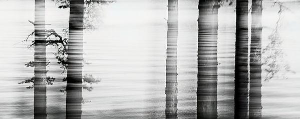 Hiljaisuus 3.jpg