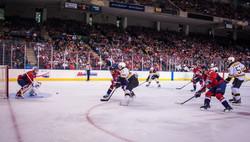 BHC, Bruins