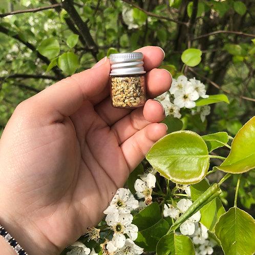 Small Jar of Dried Yarrow