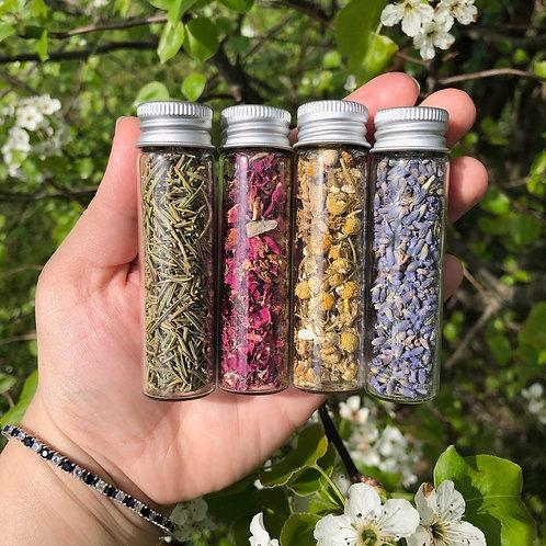 4 Large Jars of Dried Herbs Bundle