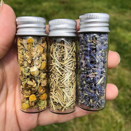 3 Medium Jars of Dried Herbs Bundle