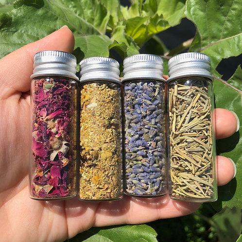4 Medium Jars of Dried Herbs Bundle