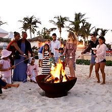 Bonfire and smores 1.jpg