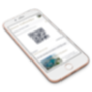 NEXUS-Access-App.png