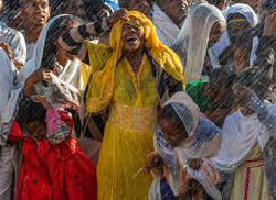 Colour Print - The Joy Of Timket by Anne May