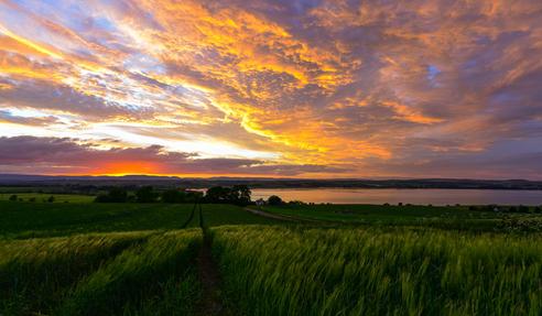 6 Tim Castleton Montrose Basin Sunset.jpg