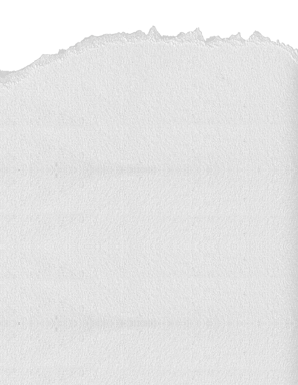 fundo branco ok.png