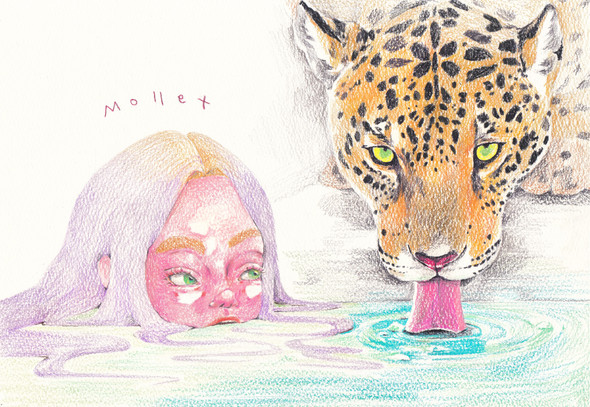 Mermaid and Leopard