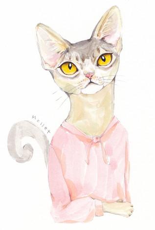 아비시니안 그녀 (She's the Abyssinian Cat)