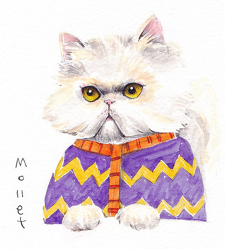 페르시안 그녀 (She's the Persian Cat)