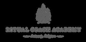 Ritual Coach Academy_Main Logo Grey.png