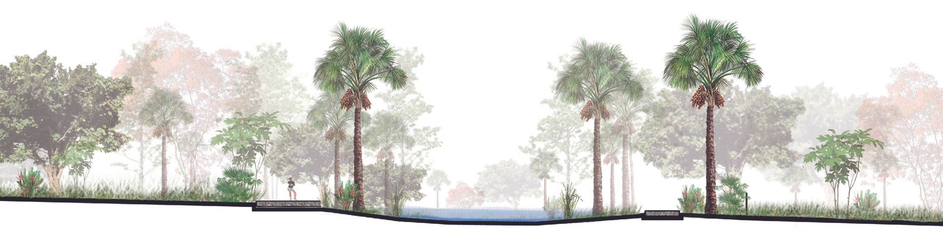 200912 Zoom Jardin de lluvia.jpg