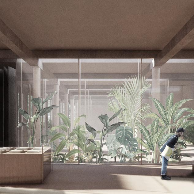 Interior Museo Final.jpg
