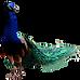 EDEN 2017 ¥ 16/9 PRODUCTIONS 16:9ème JORDAN DIOW PASCAL DUTHUIN LE REVE AUX LOUPS BESANCON GRAPHISME PEINTURE PHOTO CINEMA LE CONTI L'ISLE-ADAM ROCK MUSIC L'ISLE-ADAM PARIS ILE-DE-FRANCE 95 CINEMA L'ISLE-ADAM CINEMA VAL D'OISE CINEMA PARIS, LITTERATURE VAL D'OISE LITTERATURE PARIS CHANSON ILE-DE-FRANCE CHANSON PARIS PHOTO ILE-DE-FRANCE PEINTURE VAL D'OISE GRAPHISME ILE-DE-FRANCE cinéma val d'oise cinéma l'isle-adam cinéma ile-de-france cinéma paris littérature val d'oise littérature l'isle-adam littérature ile-de-france littérature paris roman val d'oise roman paris roman l'isle-adam roman ile-de-france musique val d'oise musique paris musique l'isle-adam musique ile-de-france chanson paris chanson val d'oise chanson l'isle-adam chanson ile-de-france peinture paris peinture val d'oise peinture isle-adam graphisme paris graphisme ile-de-france graphisme l'isle-adam photo paris photo ile-de-france photo val d'oise rock ile-de-france photo paris ART ARTISTE BORDEAUX MARSEILLE LYON FRANCE