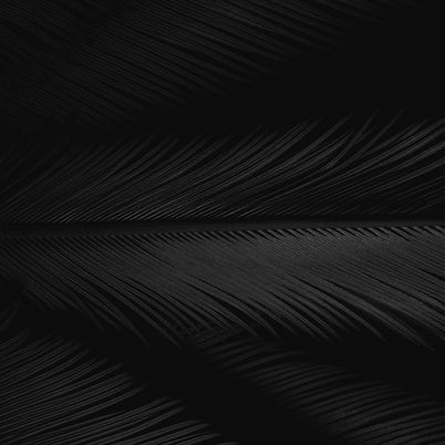 pexels-takeshi-arai-4107337_edited_edite