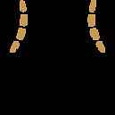 celulite-icon.png