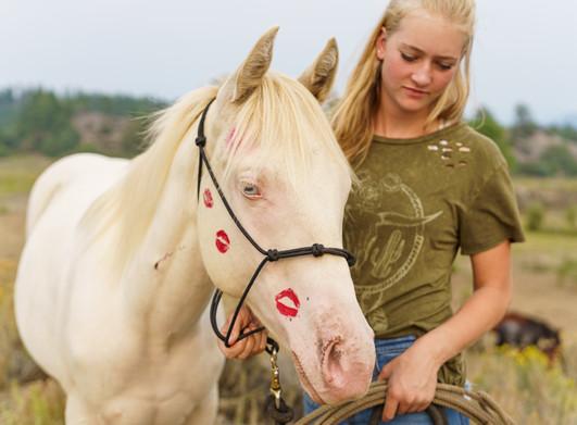 Horses as Models...