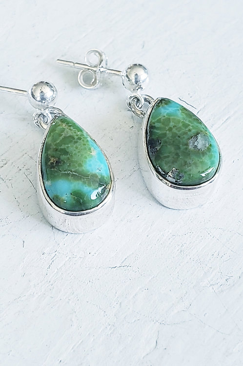 SENORAN GOLD TURQUOISE EARRINGS
