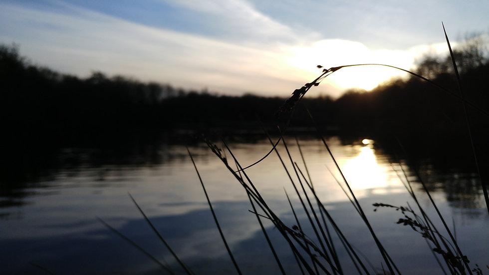 Peaceful lake background