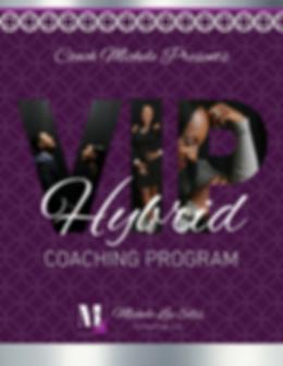 VIP Hybrid Program (1).png