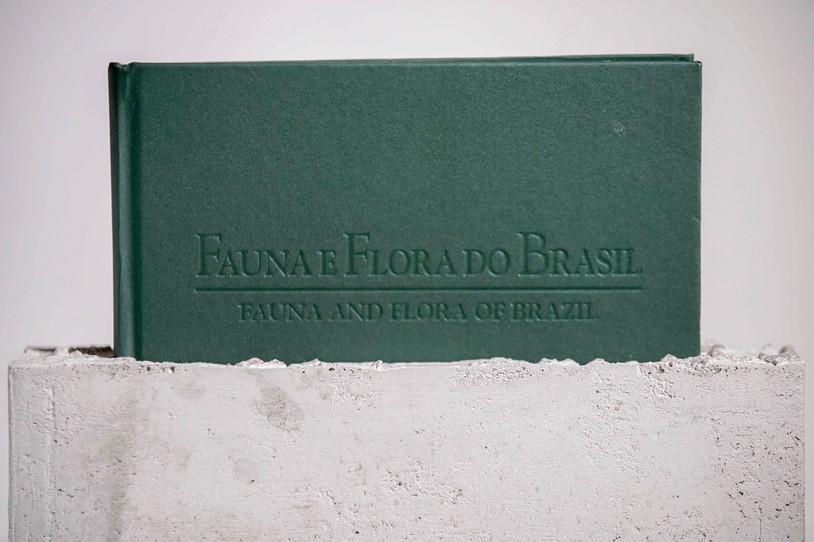 fauna-0256.jpg