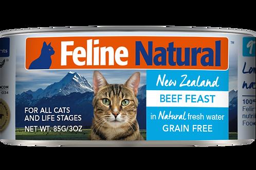 Feline Natural Grain Free Beef Feast Wet Cat food 85g