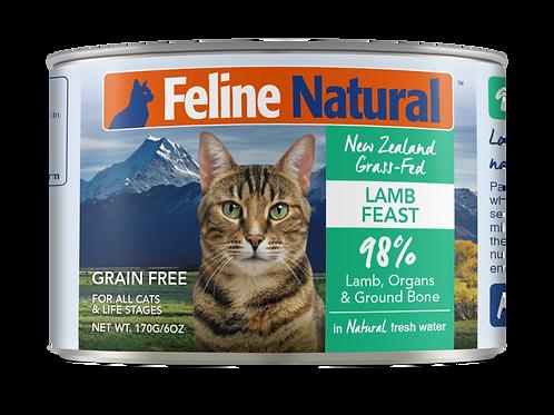 Feline Natural Grain Free Lamb Feast Wet Cat food 170g