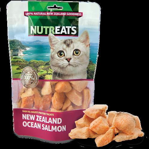 Nutreats Ocean Salmon Feline Premium Cat Treats 50g