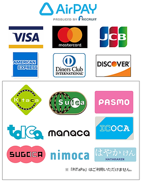 Airpay_credit_train(tate).png