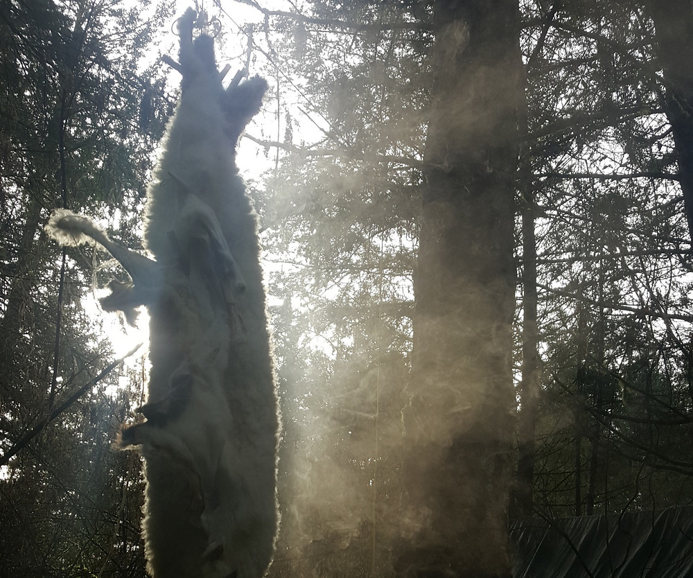Smoking a hide