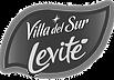 villa_del_sur_LEVITE-01_edited.png