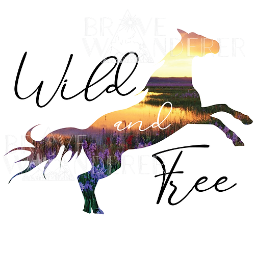 Wild and Free Horse PNG