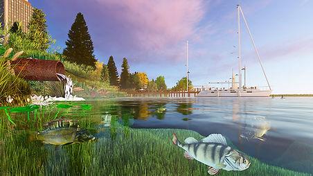 оценка воздействия, оценка воздействия на водные биоресурсы