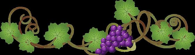 211-2113738_grape-vine-transparent-backg