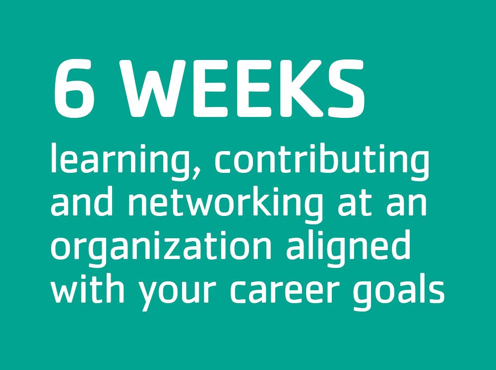 6 weeks of interning